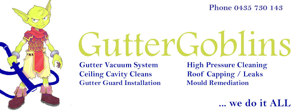 Gutter Goblins Newcastle | gutter clean, vacuum, repair
